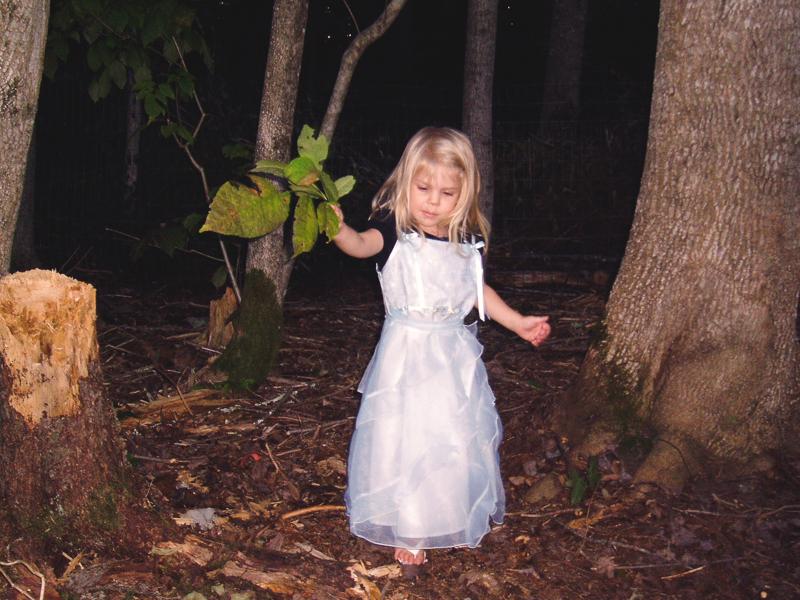 blueemmaforest-1.jpg