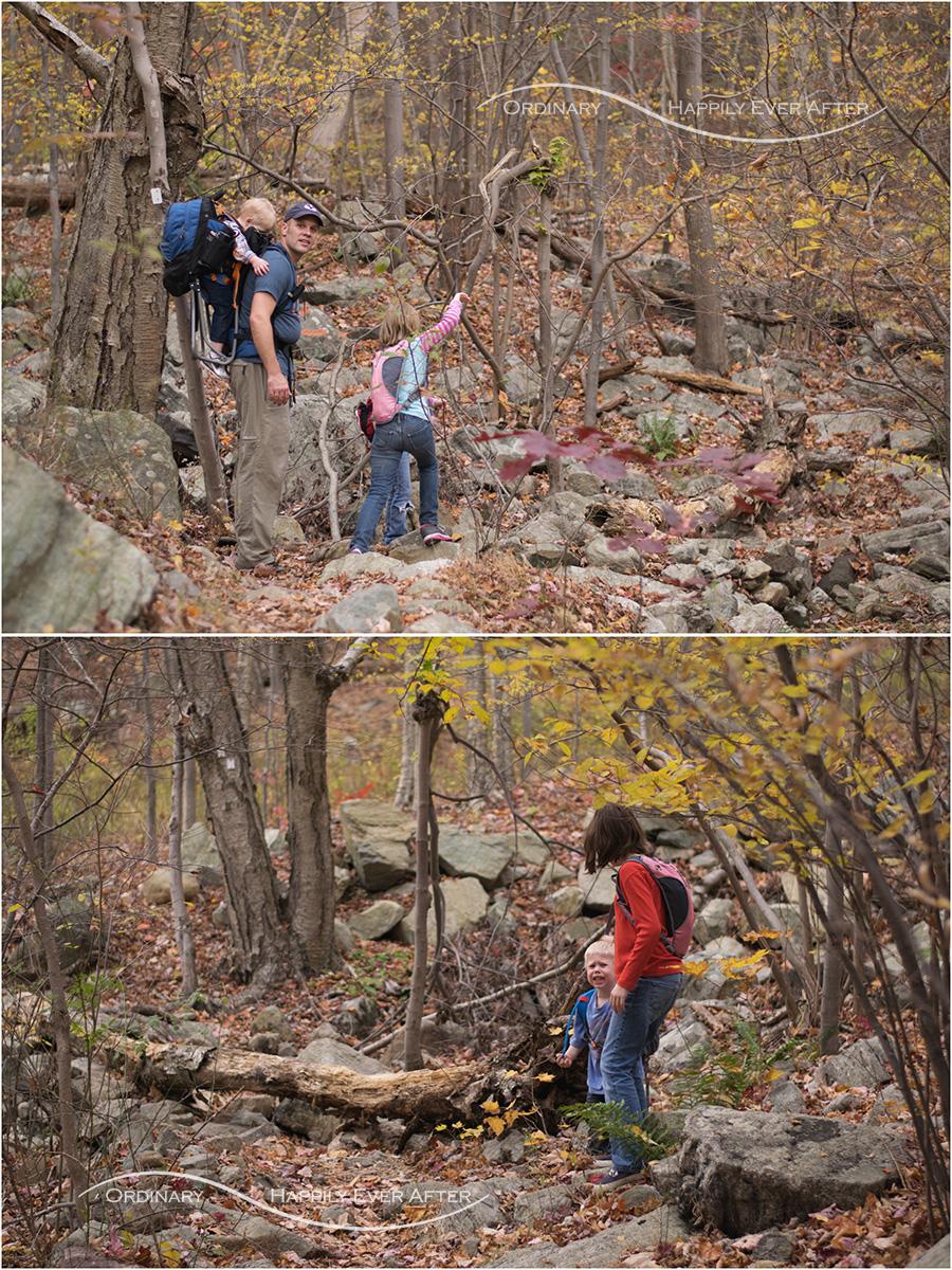 hike-39.jpg